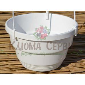 Подвесной горшок для цветов 3.7 л, Белый  (Украина)