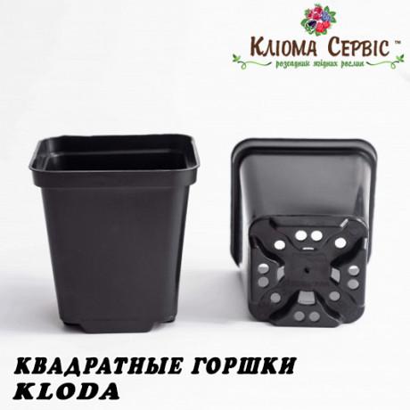 Горшки для рассады 2.7 л (кв), KLODA (Польша)