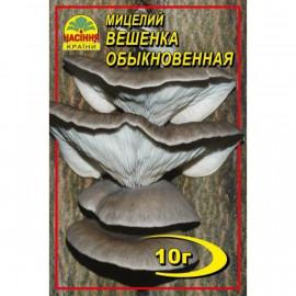 Мицелий гриба Вешенки обыкновенной, 10 гр