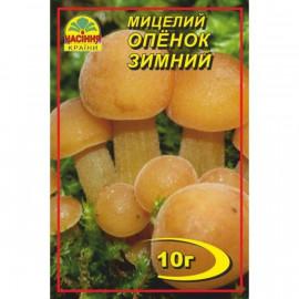 Мицелий гриба Опенок зимний, 10 гр
