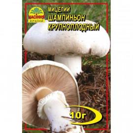 Мицелий гриба Шампиньон крупноплодный, 10 гр